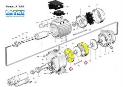 Foras Ersatzteil für Pumpe JA/CAB 150-300 #  7 Laufradschutz einzeln